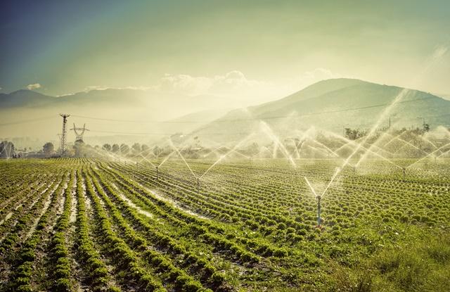 Projetos de Irrigação
